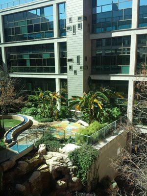 Dell Children's Hospital Courtyard. Courtesy of Steven Peck.