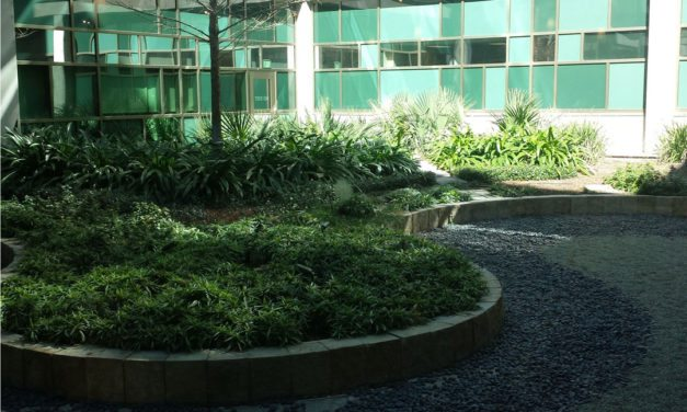 Integrating Human Health into Green Building and the Dell Children's Hospital