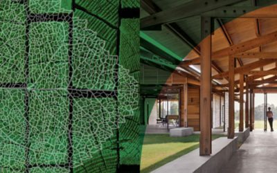 International Living Future Institute now accepting submissions for the Stephen R. Kellert Biophilic Design