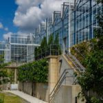 LiveWall Helps Phipps Conservatory to Display Ten Vertical Food Gardens