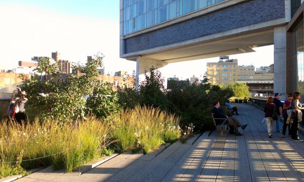 The Economics of Biophilia: Healthcare