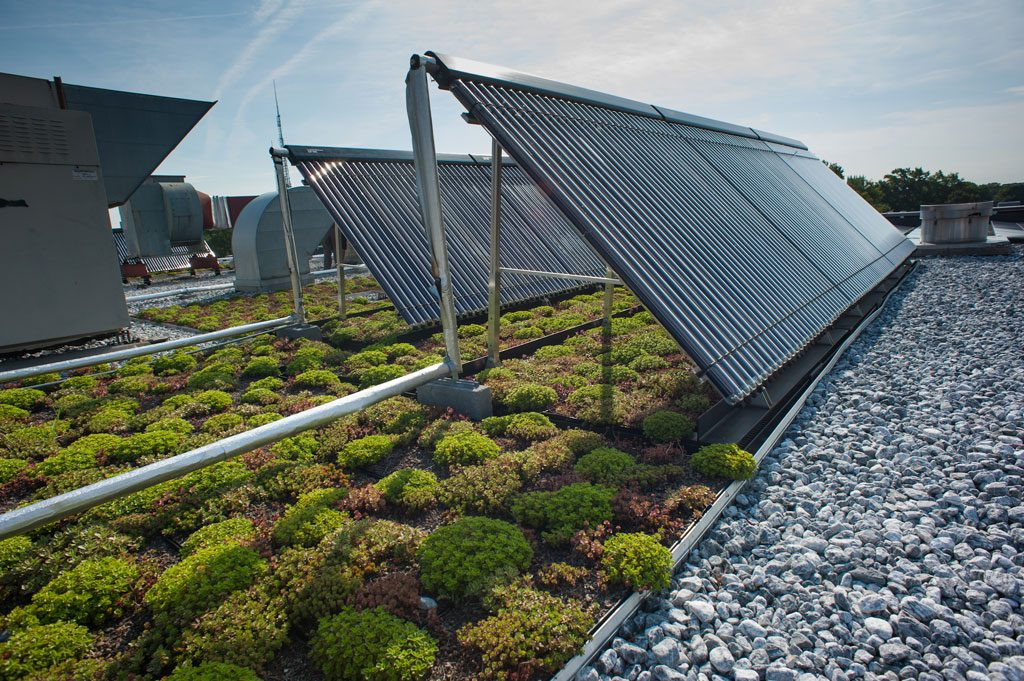 The roof of the Mary Graydon Center is both a green roof and hosts solar thermal panels that heat hot water for the campus dining hall. Courtesy American University, by Jeff Watts