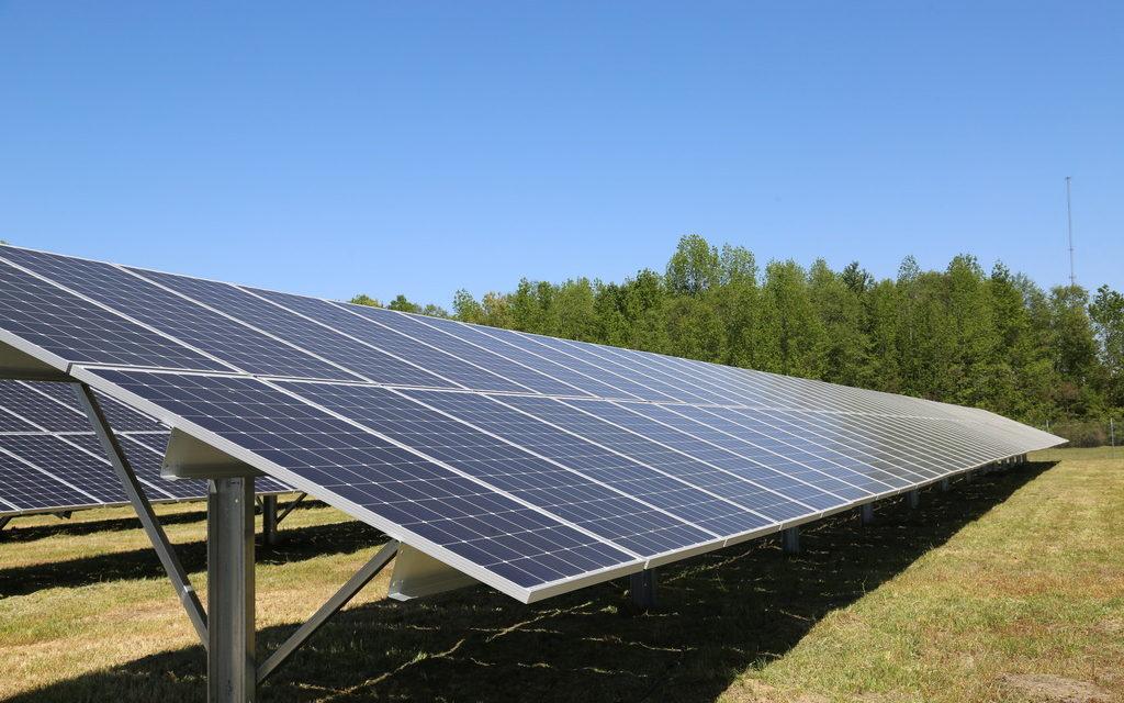 DSM Opens New Seven-Acre Solar Field in