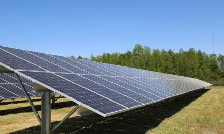DSM Opens New Seven-Acre Solar Field in Kingstree, South Carolina