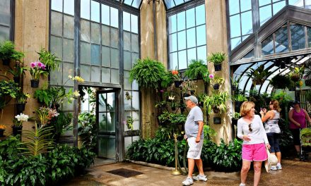 American Academy in Rome Partners with Longwood Gardens on Designing Water