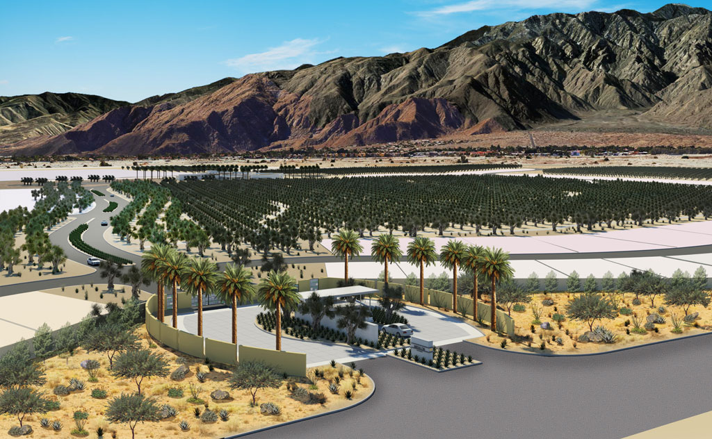 """Miralon in Palm Springs is one of the largest emerging """"agrihoods"""" in the U.S. Image by Freehold Communities"""