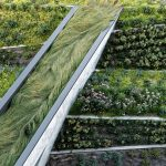 ASLA Announces 2018 Professional Awards Winners