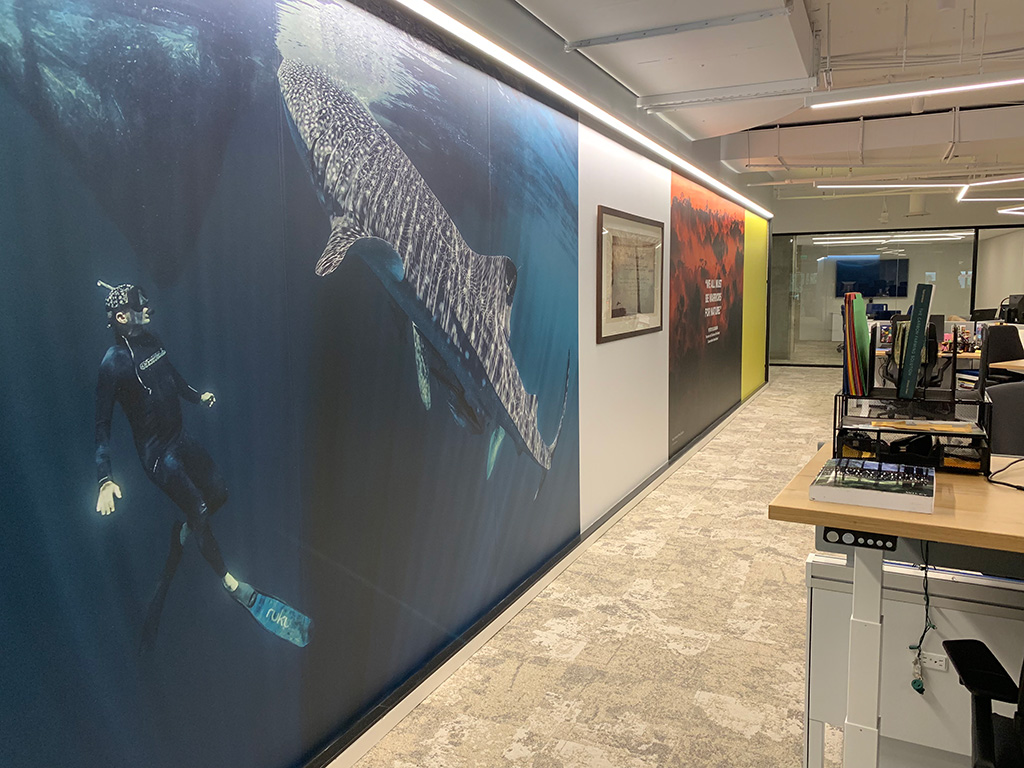 Below the mural of a whale shark, are Interface Net Effect carpet tiles containing repurposed nylon from discarded ghost nets and yarn. The carpet tiles are carbon neutral, helping the office space have a lower carbon footprint and contribute less to global warming. Courtesy of Conservation International
