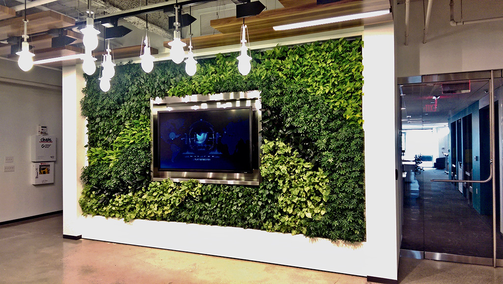 Twitter has installed multiple GSky® Versa Walls®, including this wall in Cambridge, Massachusetts. Courtesy of GSky Plant Systems, Inc.