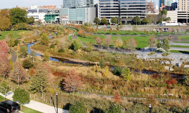 ASLA touts climate solutions for all during COP 25