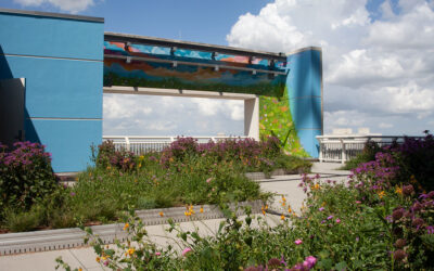 Roof garden serves as oasis for patients at Houston Methodist Hospital