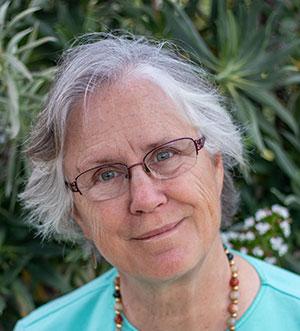 Lisa Heschong, a fellow of the Illuminating Engineering Society (IES) and founding principal of the Heschong Mahone Group